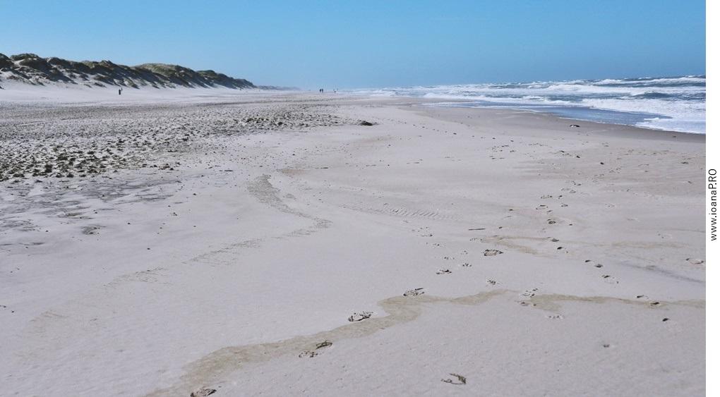 plaja in Sondervig Danemarca