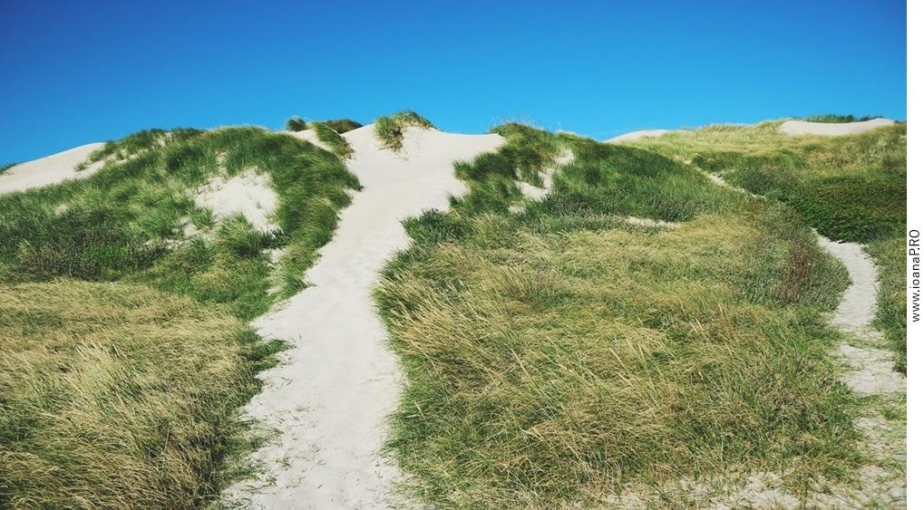sand dune in Søndervig Denmark